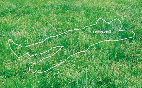Howies_reserved